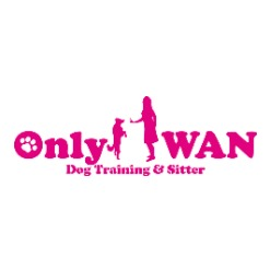 Only-WAN